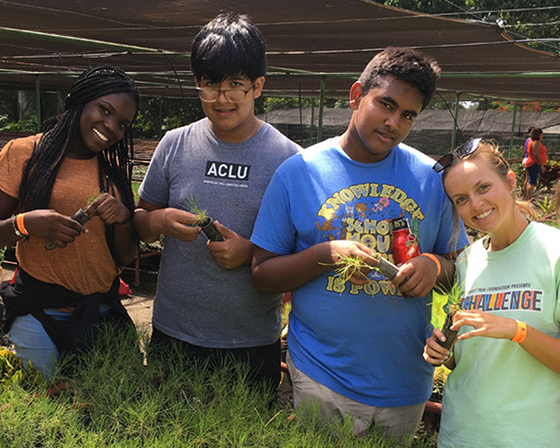 Youth Ambassador students in an agricultural nursery.